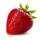 Bibit Strawberry