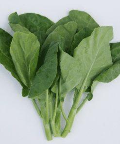 Sayur Kailan