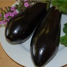Terong Long Purple Aubergine
