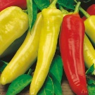 Cabe Hot Wax Hungarian Pepper