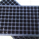 Tray Semai (Seedling Tray)