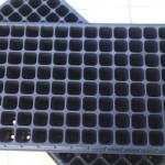 Tray Semai 105 Lubang – 5 pcs