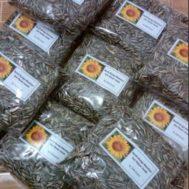 Benih Bunga Matahari Kuning Lokal – 250 gram