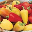 Paprika Antohi Romanian