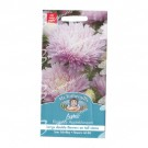 Mr Fothergills Aster Kingsize Appleblossom