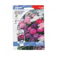 Johnsons Seeds Aster Milady Mixed