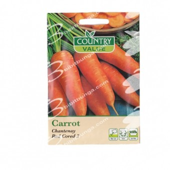 Benih Carrot Chanteney Red Cored 2 1500 Biji – Country Value