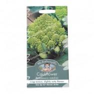 Benih Cauliflower Romanesco Natalino 250 Biji – Mr Fothergills