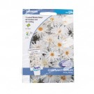Johnsons Seeds Chrysanthemum Crazy Daisy
