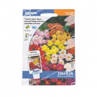 Benih Dahlia Bronze Leaf Mixed 40 Biji – Johnsons Seeds