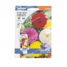 Johnsons Seeds Dahlia Showpiece Mixed