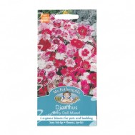 Mr Fothergills Dianthus Baby Doll Mixed