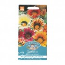 Mr Fothergills Gazania Sunshine Mixed