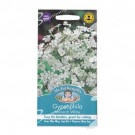 Mr Fothergills Gypsophila Monarch White