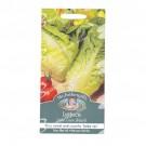 Mr Fothergills Lettuce Little Gem Pearl