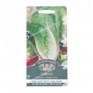 Mr Fothergills Lettuce Lobjoits Green Cos
