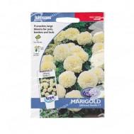 Johnsons Seeds Marigold Vanilla F1
