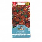 Mr Fothergills Marigold Red Cherry