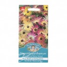 Mr Fothergills Mesembryanthemum Livingstone
