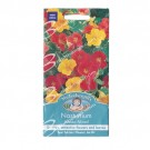 Mr Fothergills Nasturtium Alaska Mixed
