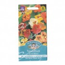 Mr Fothergills Nasturtium Jewel Mixed