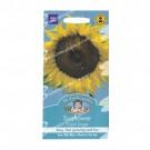 Mr Fothergills Sunflower Giant Single