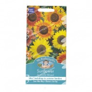 Mr Fothergills Sunflower Sunburst
