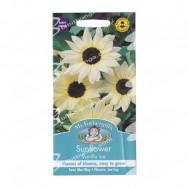 Mr Fothergills Sunflower Vanilla Ice