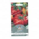 Mr Fothergills Tomato Costoluto Fiorentino