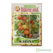 Benih Tomat Karina 10 gram – Bintang Asia