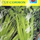 Winon Seed Seledri Cut Common