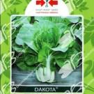 Panah Merah Sawi Dakota