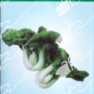 Winon Seed Mini Pak Choy White 5 Pcs