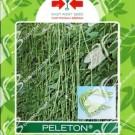 Panah Merah Kacang Panjang Peleton
