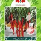 Panah Merah Cabe Pilar F1