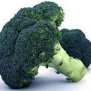 Benih Brokoli Waltham
