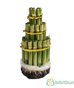 Bambu Rejeki Pagoda 3T