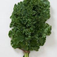 Benih Kale Nashs Green