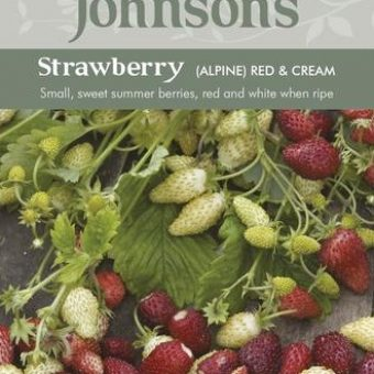 Benih Strawberry Alpine Red & Cream 150 Biji – Johnsons Seeds