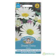 Benih Mr Fothergills Chrysanthemum Shasta Daisy Alaska