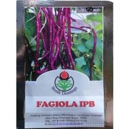 Benih Kacang Panjang Ungu Fagiola IPB 50 biji – Dramaga