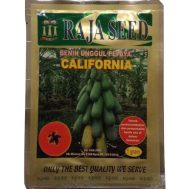 Benih Pepaya California Raja Seed 1gr (60 biji)