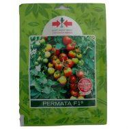 Benih Tomat Permata F1 150 biji – Panah Merah