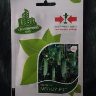 Benih Ketimun Mercy F1 50 biji – Panah Merah