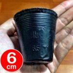 Polybag Pot 6 cm – 50 Pcs