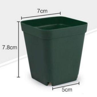 Pot Kaktus & Sukulen Mini – Hijau Gelap – 6 Pcs