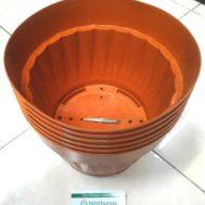 Pot Bunga Vanda 2500 Merah Bata – 6 Pcs