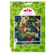 Benih Cabe Rawit Taruna 10 gram – Panah Merah