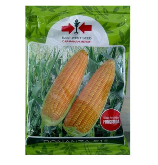 BB Seed. BB Seed adalah akun official Bibitbunga.com menjual produk benih ...