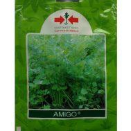 Benih Seledri Amigo 20 gram – Panah Merah